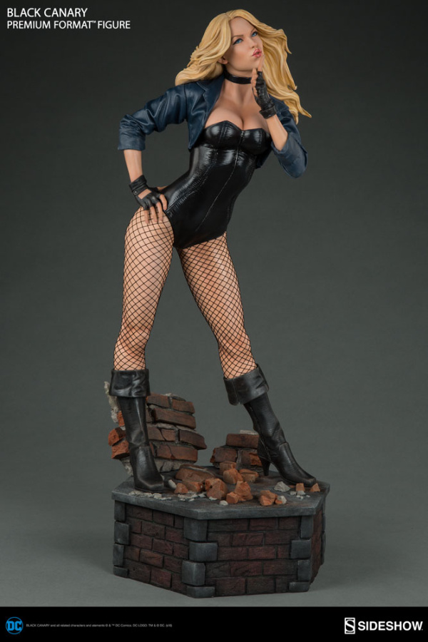 dc-comics-black-canary-premium-format-figure-300287-06